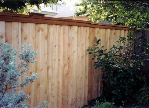 backyard cedar privacy fence with cap and trim