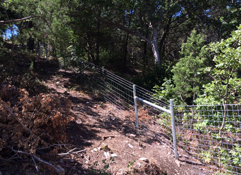 barbed-wire-to-cattle-panel-fence-up-hill-metal-posts