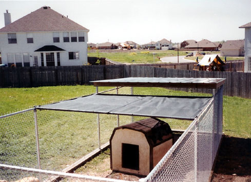 chain link fence around dog kennel with shaded roof